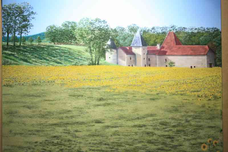 Camp de vira-sorelhs
